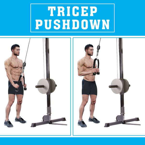 Multifunction Narrow Tricep Seated Row Bar Handle Multi Gym Cable Attachment